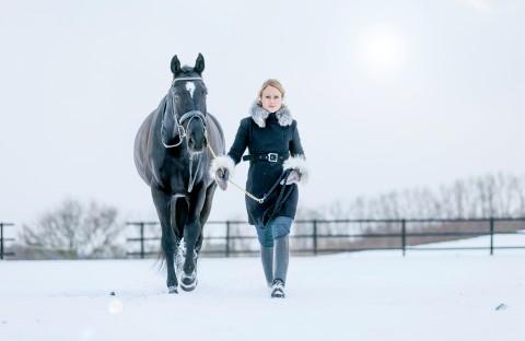 Black Horses 3